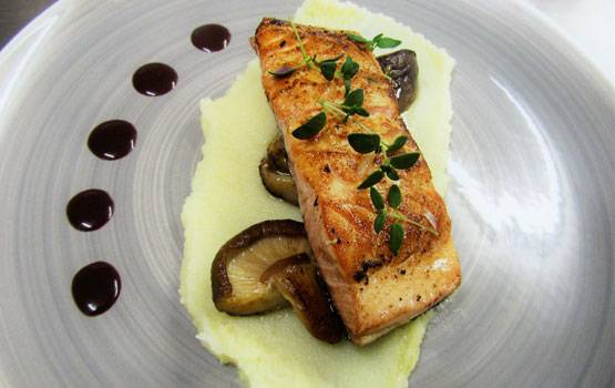 Pan-fried Scottish salmon with a root vegetable puree, mushrooms and red wine sauce